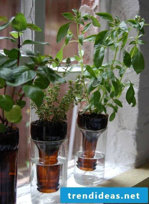 DIY vases from plastic bottles