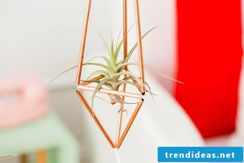 home decor flowerpot self-help guide diy living ideas