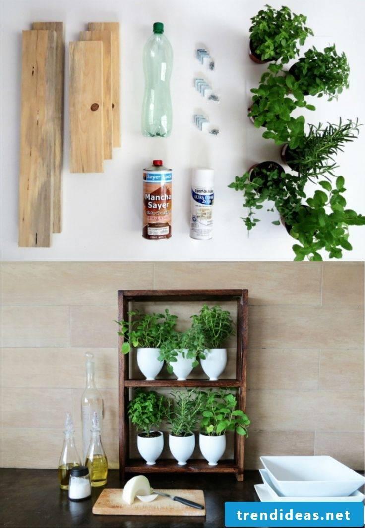 Kitchen decoration making flower pots themselves