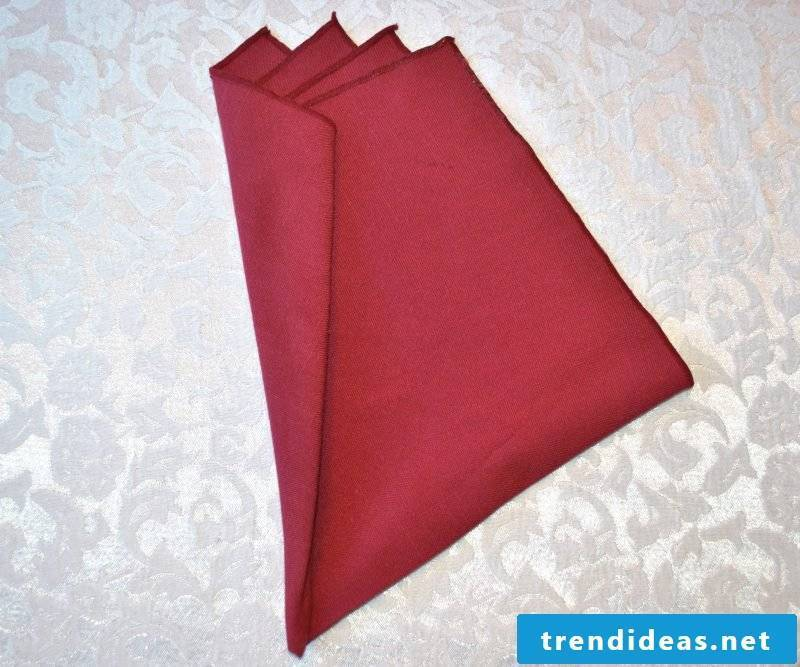 5th step to make a peacock from the napkins.
