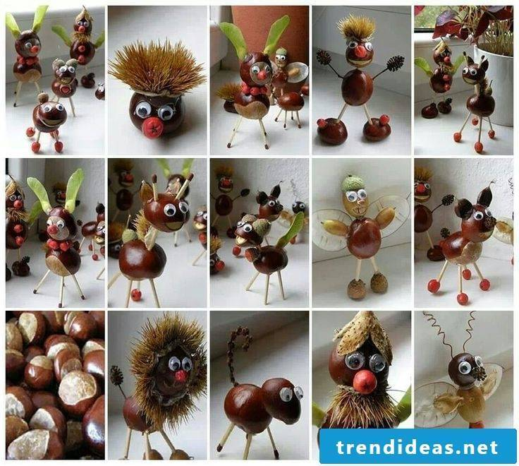 From chestnut males to chestnut animals - get creative ideas from our examples!