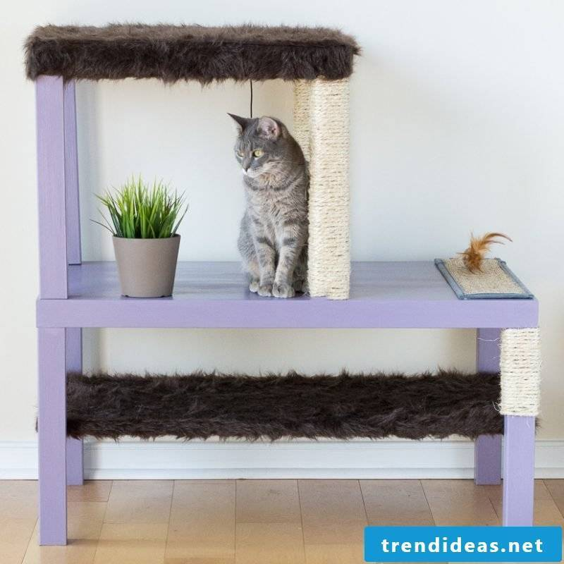 Cat furniture ideas