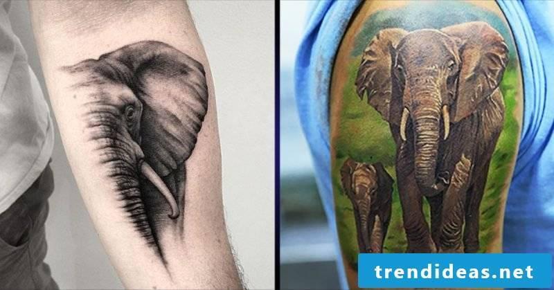 Elephant tattoo men