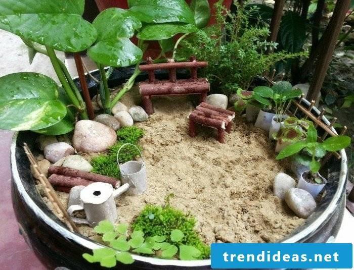 a mini garden in the garden