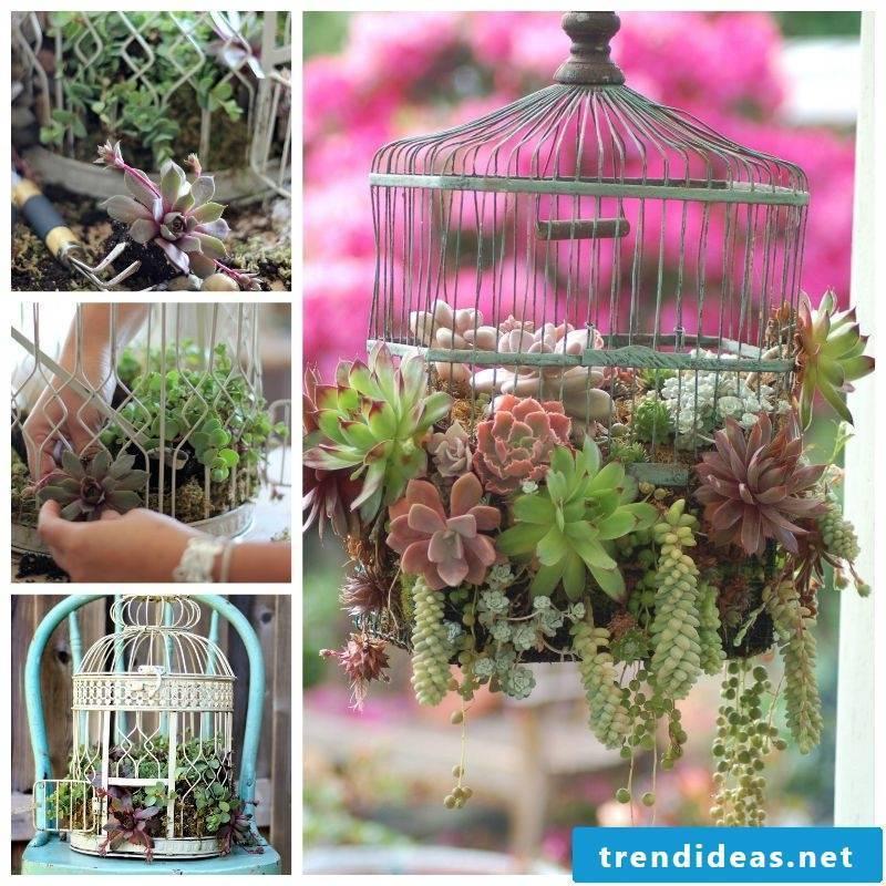 environmentally friendly garden decoration without a little bird
