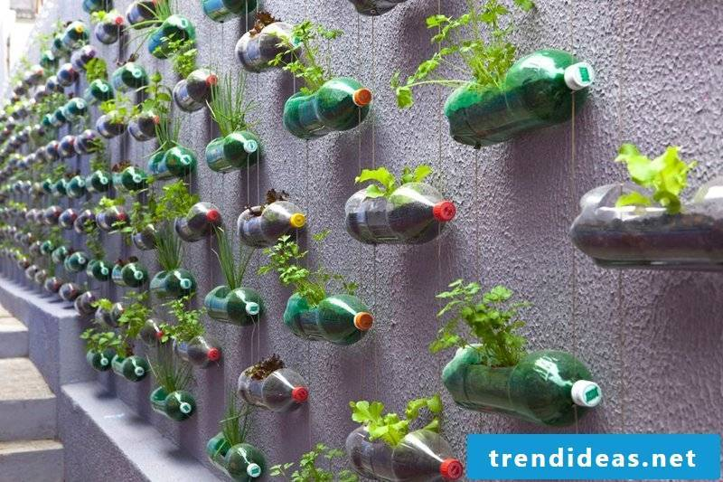 environmentally friendly garden decoration from old bottles and flowers