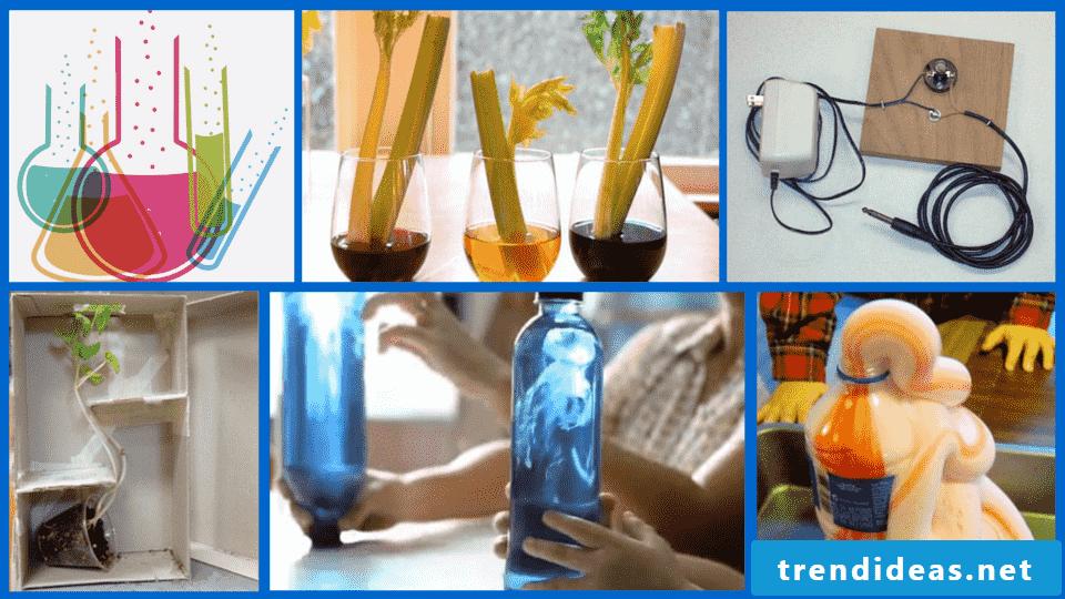 Experiments for children DIY ideas
