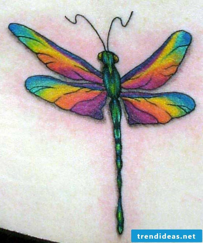 Dragonfly colored tattoo