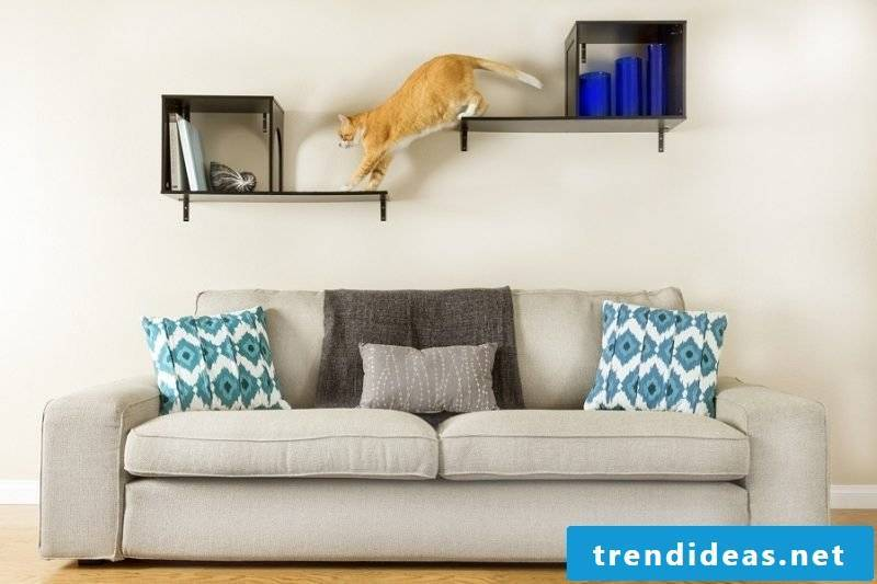 Cat furniture shelf