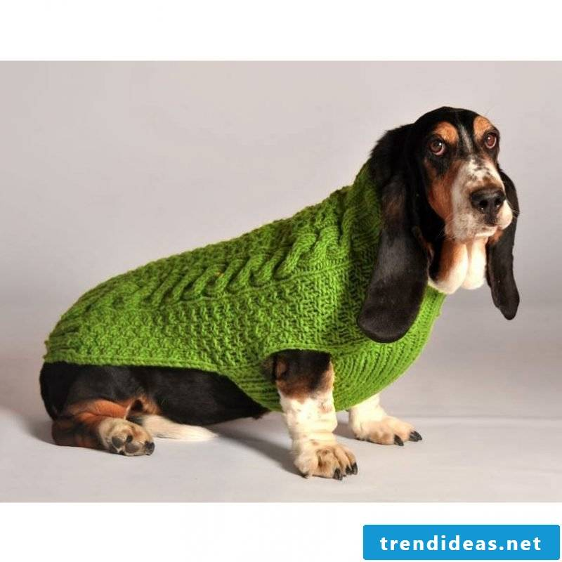 Dog sweater knit cable pattern