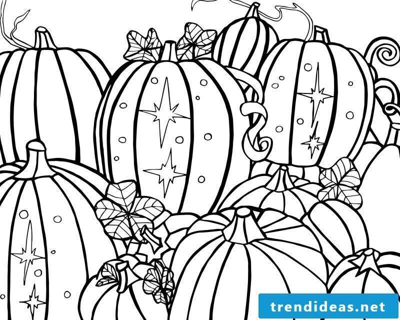 Coloring pages for Halloween with traditional pumpkins