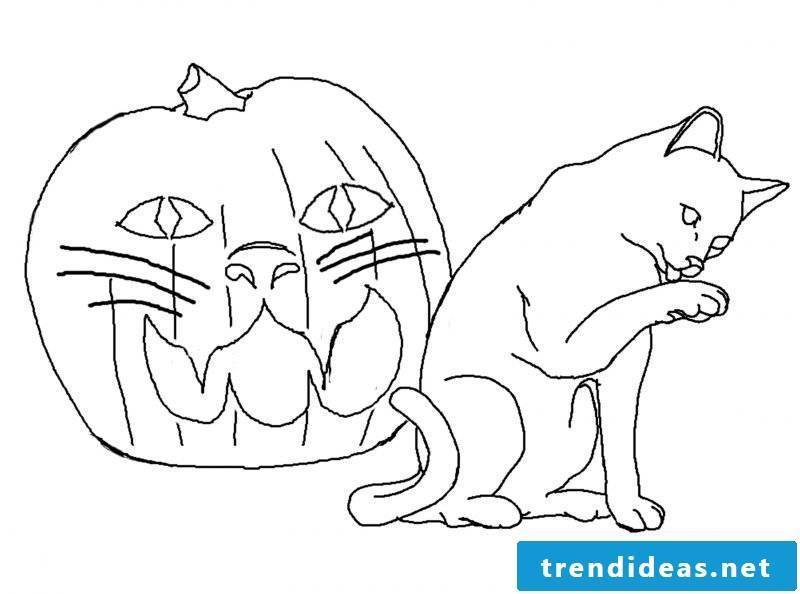 Coloring pages for Halloween with cat