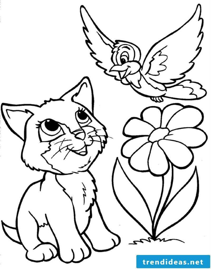 Coloring page for printing cat flower bird