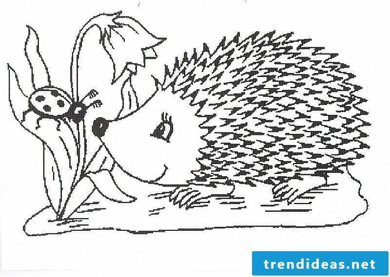 Hedgehog and ladybugs free coloring page