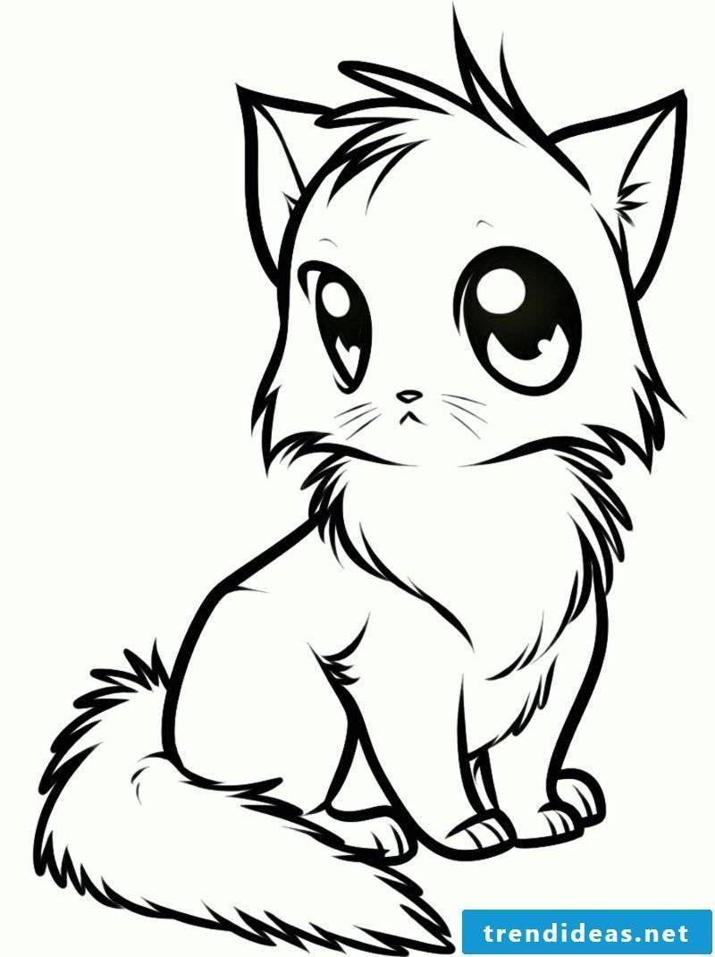 Coloring Pages Animals Cat