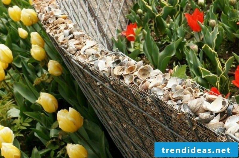 attractive gabion wall with shells