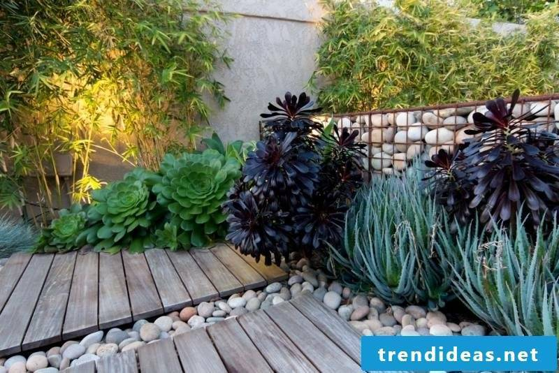 Gabion wall planted from natural stone