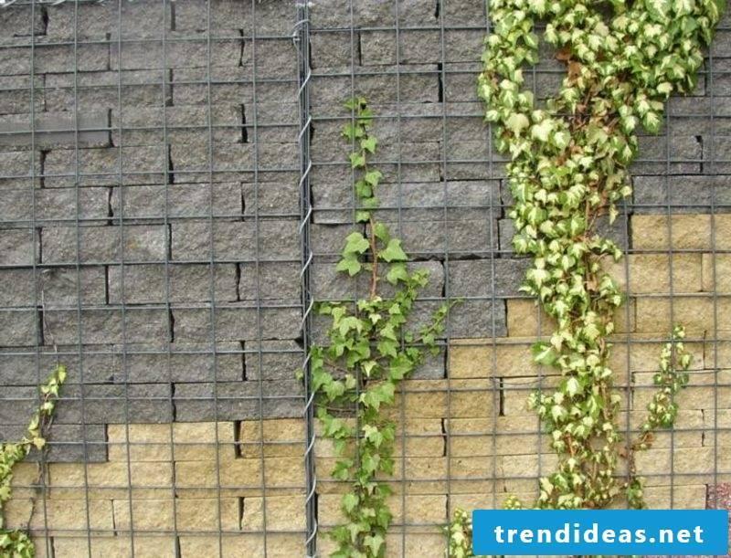 Gabion fence made of bricks