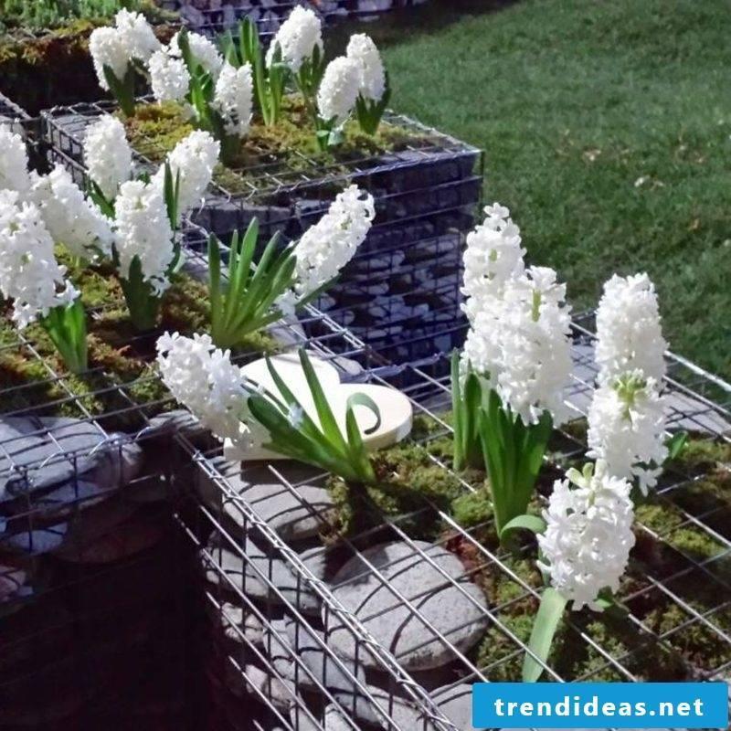 creative garden design Gabionenzaun