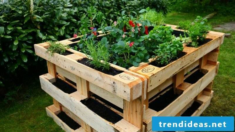 Build a raised bed of europallets yourself
