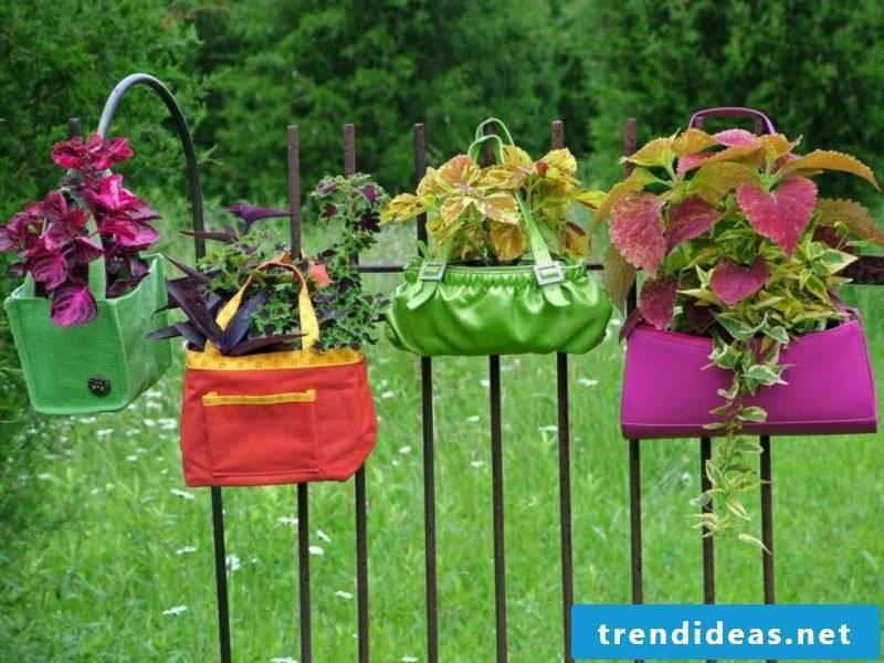 Garden ideas for little money Upcycling Damentschen