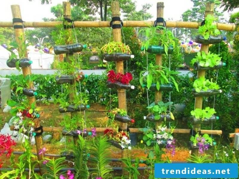 Garden Ideas for Little Money Upcycling Bottles