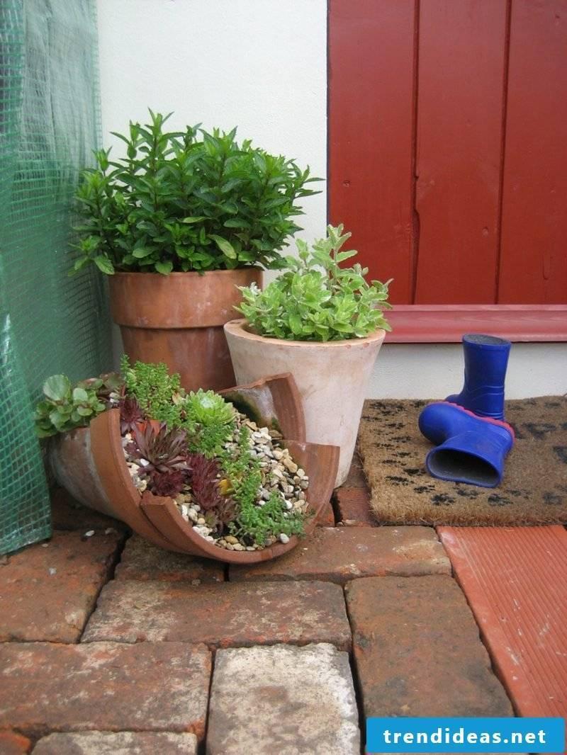 Garden ideas for little money Planting a flower pot