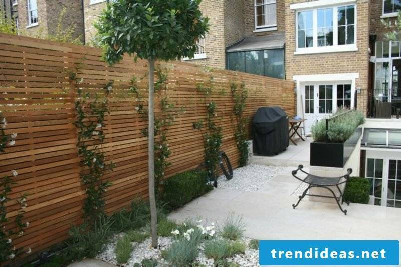 Landscaping Ideas Screening Fence Creepers