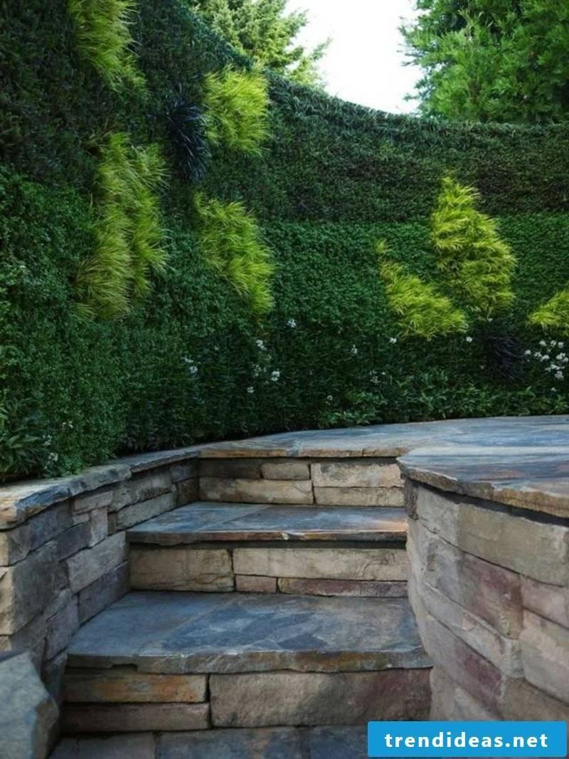 Garden design ideas hedge high privacy