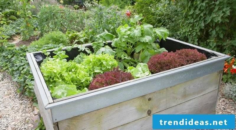 Garden design ideas raised bed wood