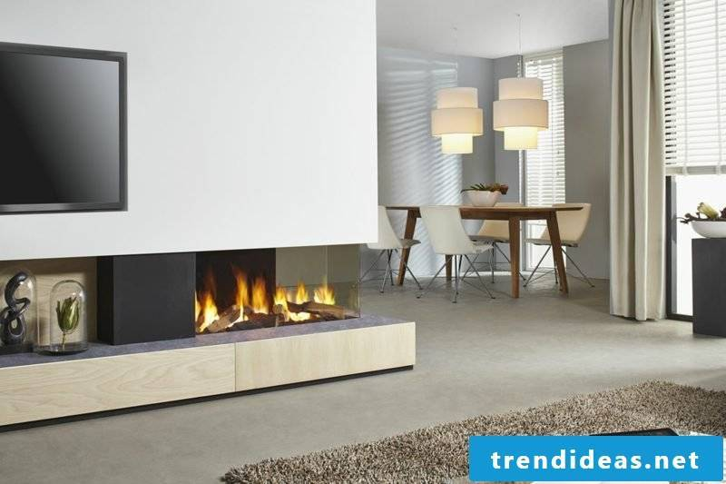 Fireplace inserts in a variety of forms