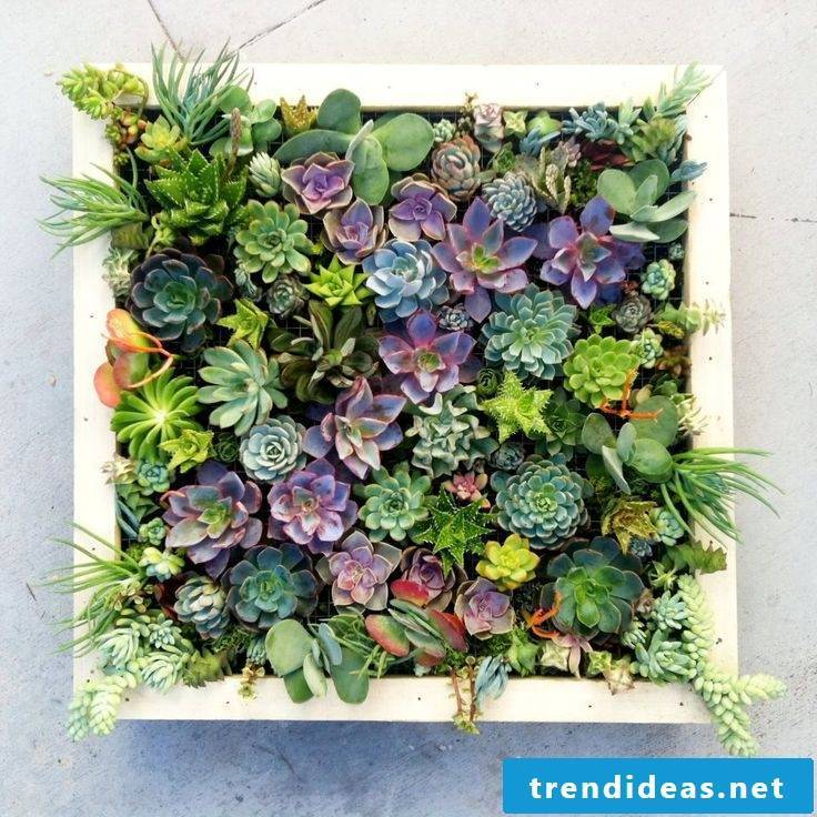 Creative ideas with fresh flowers for the perfect gift