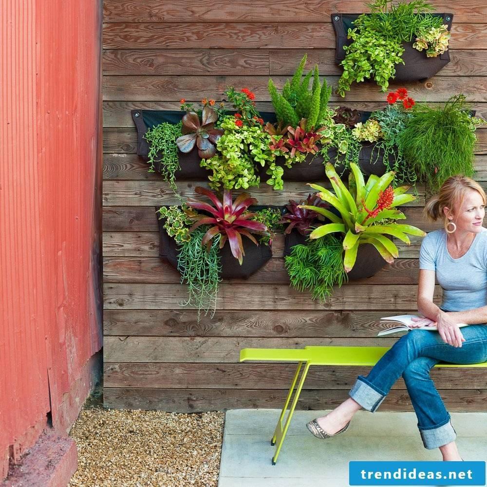 Creative ideas for garden