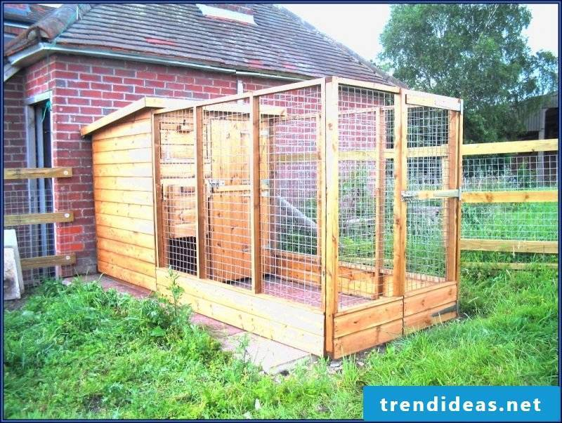 Give your dog freedom: build dog kennels yourself!