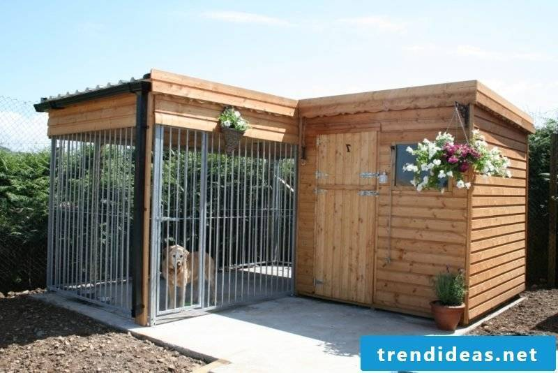 Build dog kennels yourself: more beautiful living!