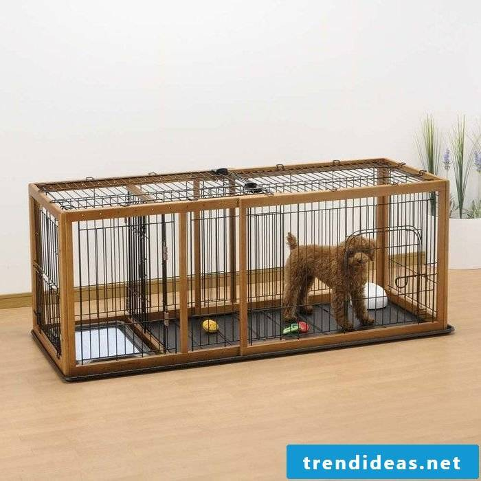 Build dog kennels yourself for the little dogs!