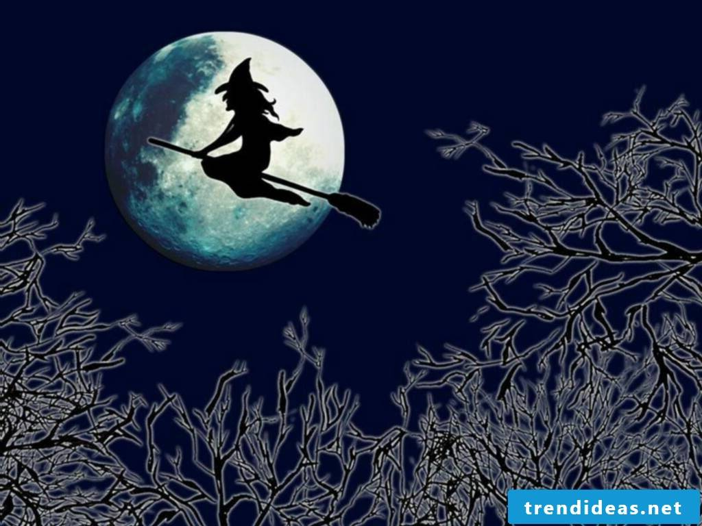 The witch in the midnight flight