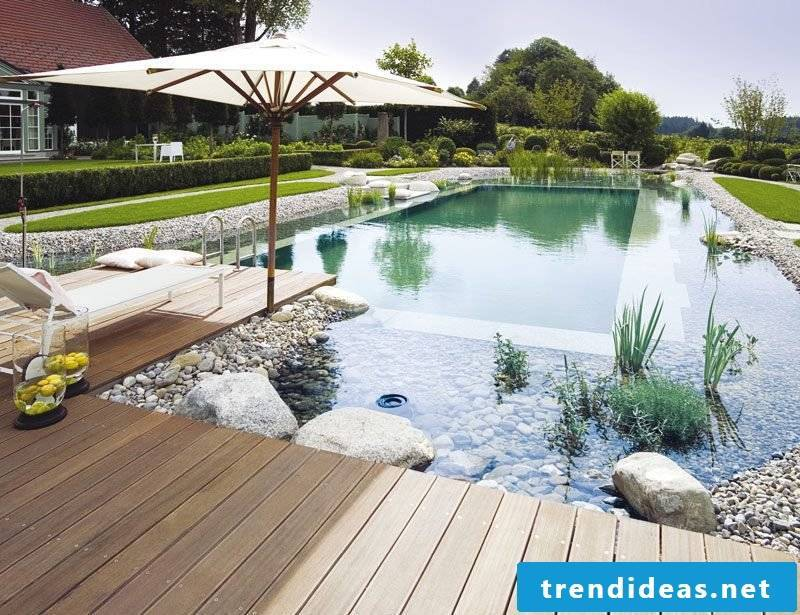 swimming pond costs new