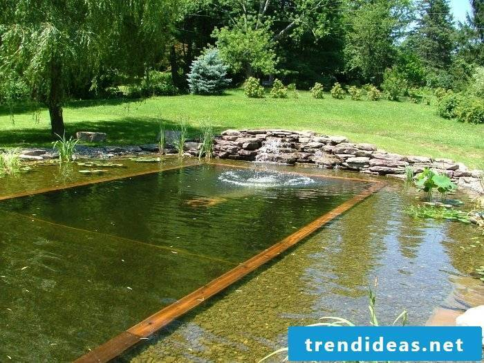 swimming pond cost prices