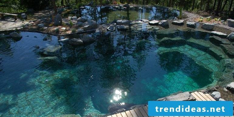 swimming pond costs a lot