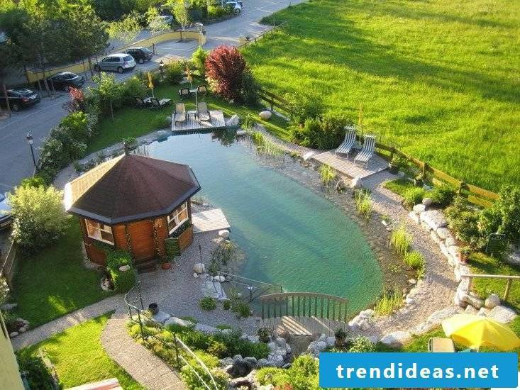 swimming pond costs old