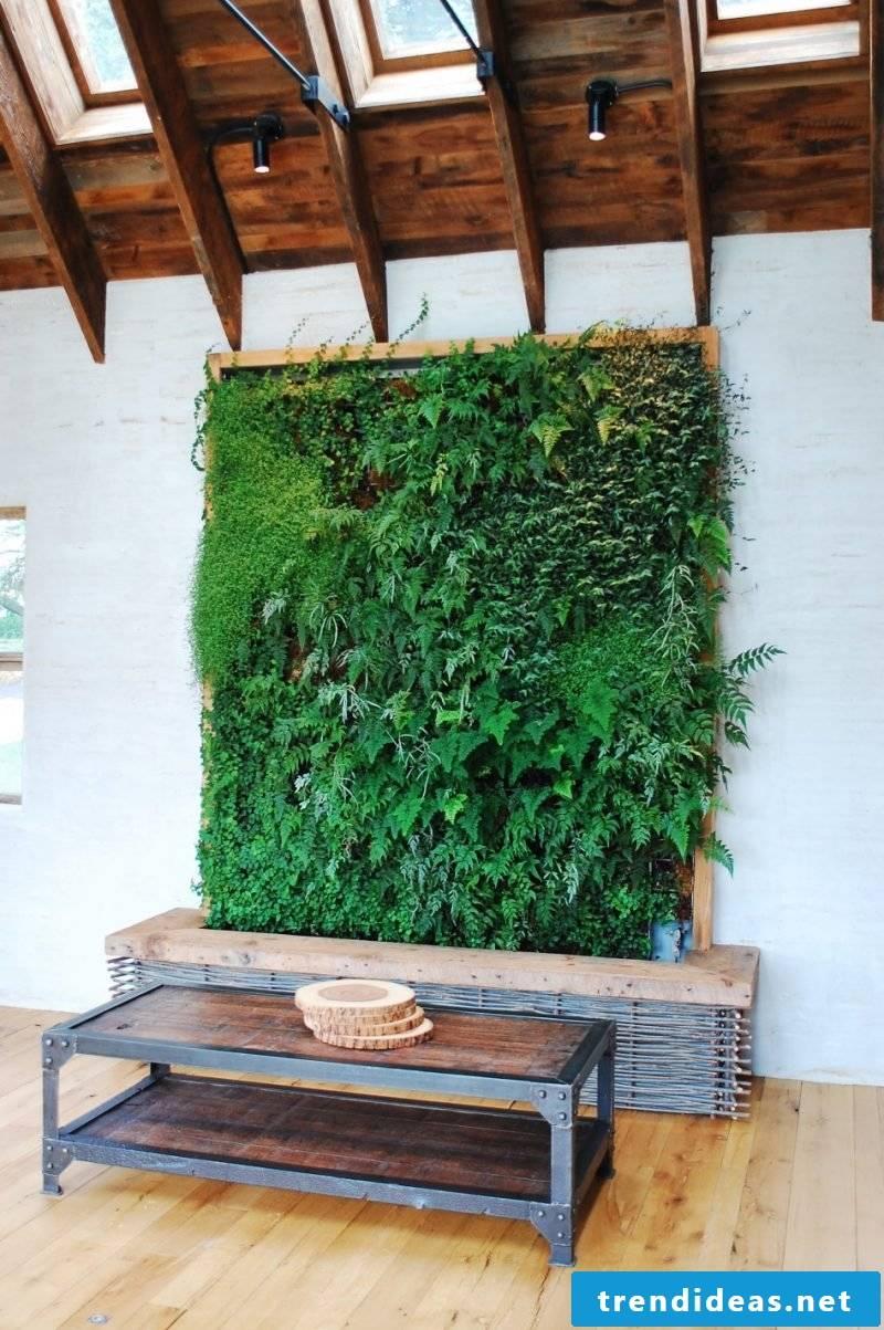 Vertical garden calms the owners