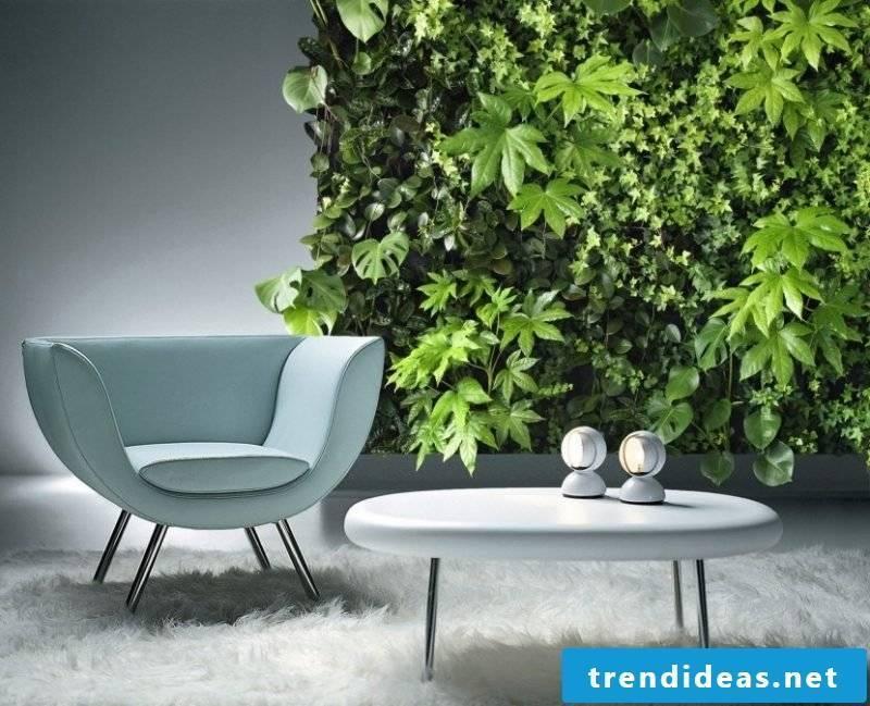 Maintain vertical garden properly
