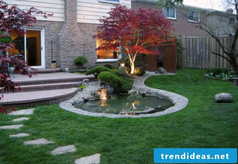 Japanese maple planting and care tips