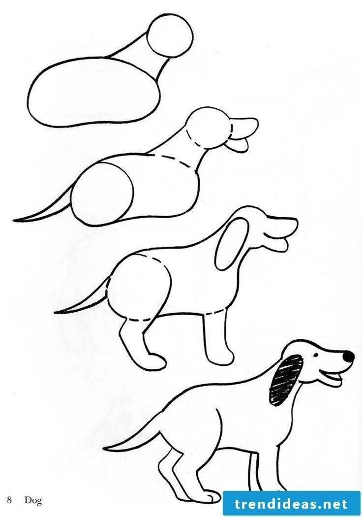 Drawing drawing animals drawing