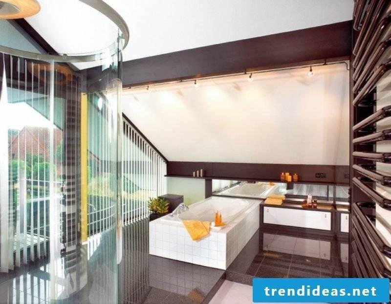 Luxury bathroom with sloping roof