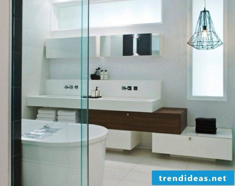 Luxury bathroom neutral color scheme puristic design