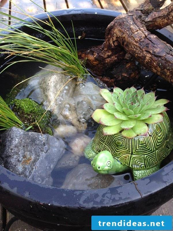 DIY mini pond in the pot and many more great ideas for balcony design can be found here