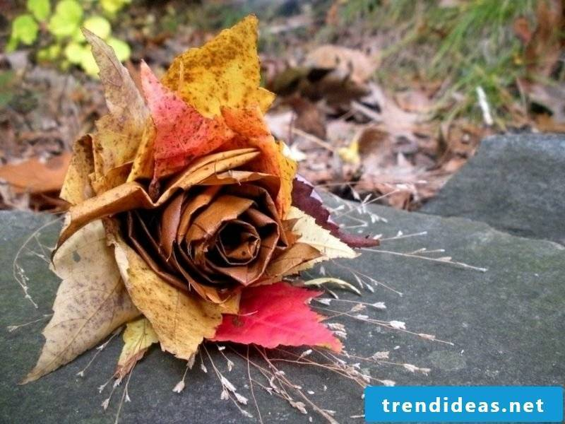 Autumn decoration Rose made from autumn leaves