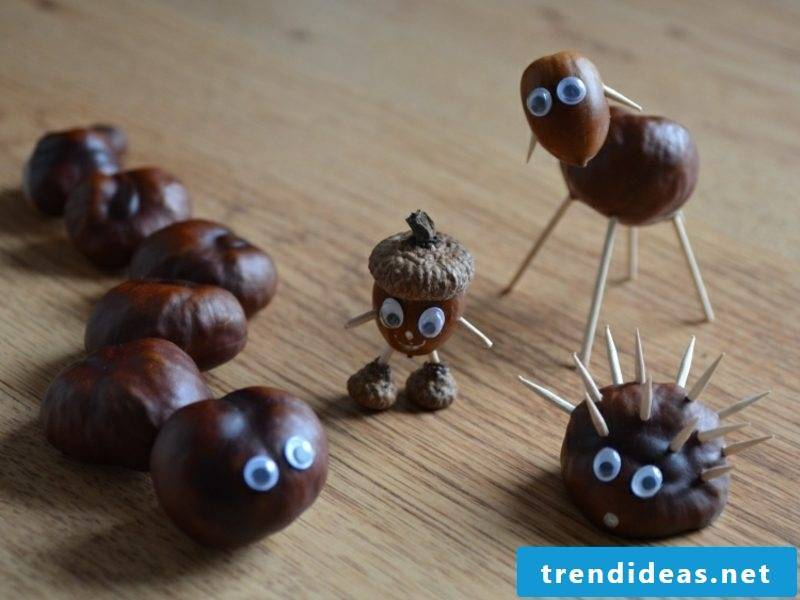 with chestnuts make autumn decoration